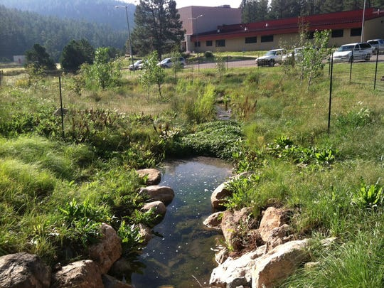 Bog Springs was the first project tackled by the Rio Ruidoso Restoration Committee.