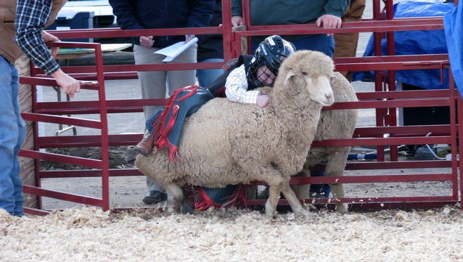 Arizona National Livestock Show that takes place at the Arizona State Fairgrounds in Phoenix from Dec. 27 through Jan. 1.
