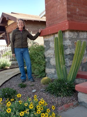 El Paso landscaper Cheryl Garing renovated this Sunset Heights front yard with native plants. The home will be part of the Garden Tour and Cactus Sale on  April 9-10