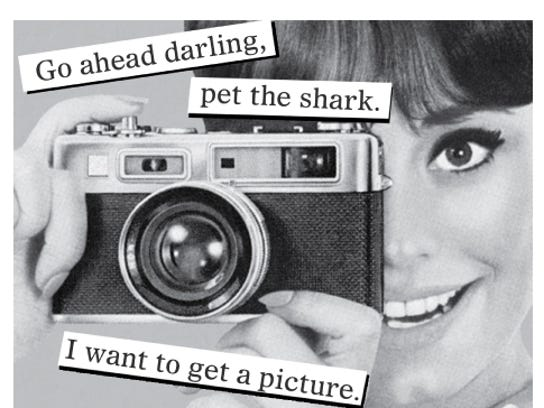 Go ahead darling, pet the shark. I want to get a picture.