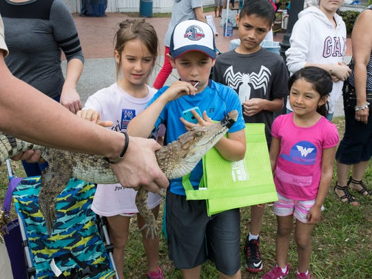Kids look at an alligator during the annual Earth Day-Bay Day event in Heritage Park on Saturday, April 8, 2017.