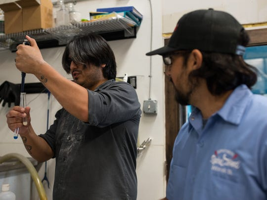 Edd Adams brewer at Lorelei Brewing Company (left) and Rebel Toad Brewing's Hector Cavazos at Lorelei Brewing Company as they Lazy Beach Brewing, and BJ's Brew Pub work to create a beer for hurricane relief on Wednesday, Sept. 6, 2017. All the proceeds from the beer will be donated to a non-profit organization created called Corpus Craft Cares.
