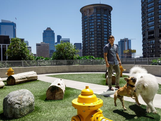 What appears to be a dog park at Amazon's corporate