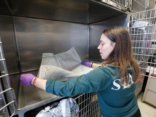 Greily Urena, a staff member at Hi Tor Animal Care