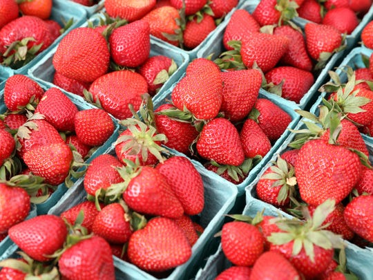 June is the season for pick-your-own strawberries.