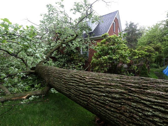A large tulip tree fell on Brent and Lauren Hirn's South Nyack home, crushing a car in the driveway May 16, 2018.