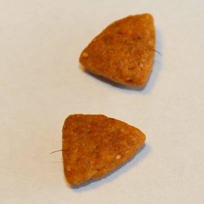 Pieces of dog food with fiber-like material embedded