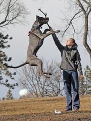Sam Eberle and her 8-month old Great Dane, Kratos, enjoy a 60-degree Friday afternoon in Bismarck, N.D.