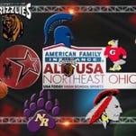 2014-15 AmFam ALL-USA Northeast Ohio Girls Basketball Team logo