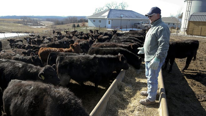 Don Hunerdosse, a farmer near Milo, looks out over his cattle at his home in rural Warren County, Iowa.