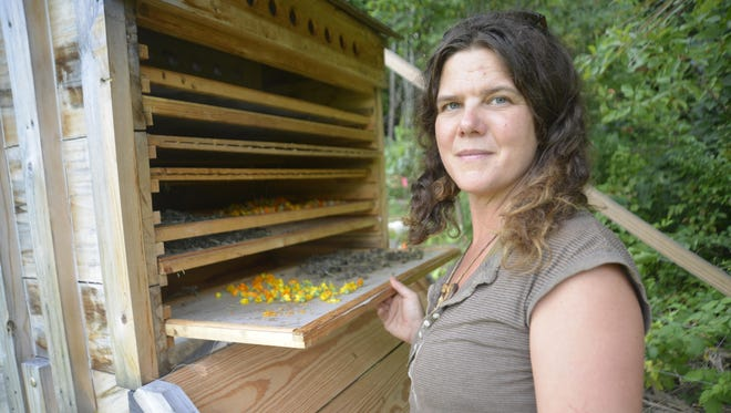 Natalie Bogwalker looks over a solar-powered dehydrator drying flowers at Wild Abundance where primitive skills are updated into the 21st century.