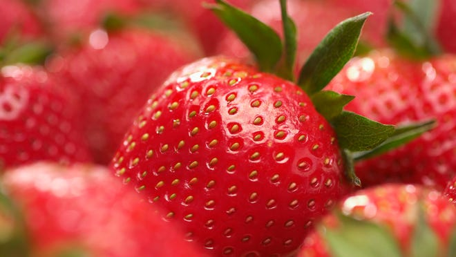 Today, America is the world's largest producer of strawberries (shipping over 36 billion pounds in 2012!), with the majority grown on 40,000 acres in California.