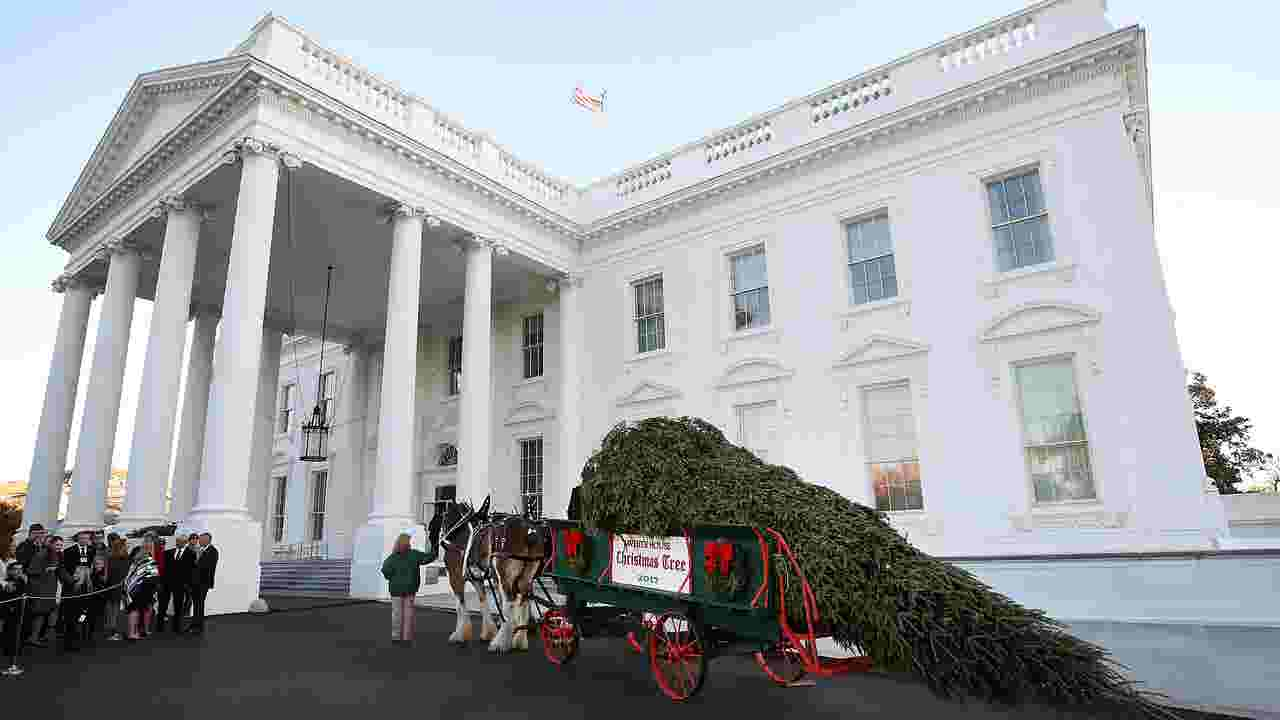 Donald Trump cancels usual White House Christmas party for press corps