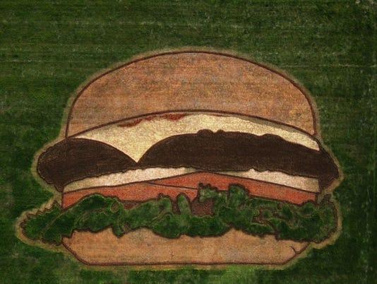 636591683455602822-Crop-Burger-2.jpg