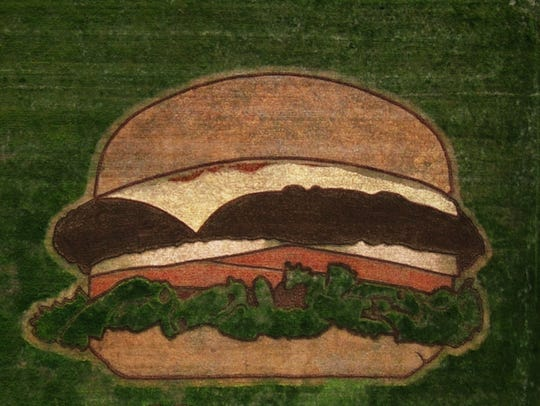 Hardee's created a hamburger-shaped crop circle in