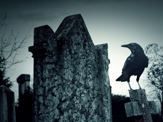 Join us for an evening of spooky tales from beyond the grave with Ed Okonowicz, local folklorist and author.