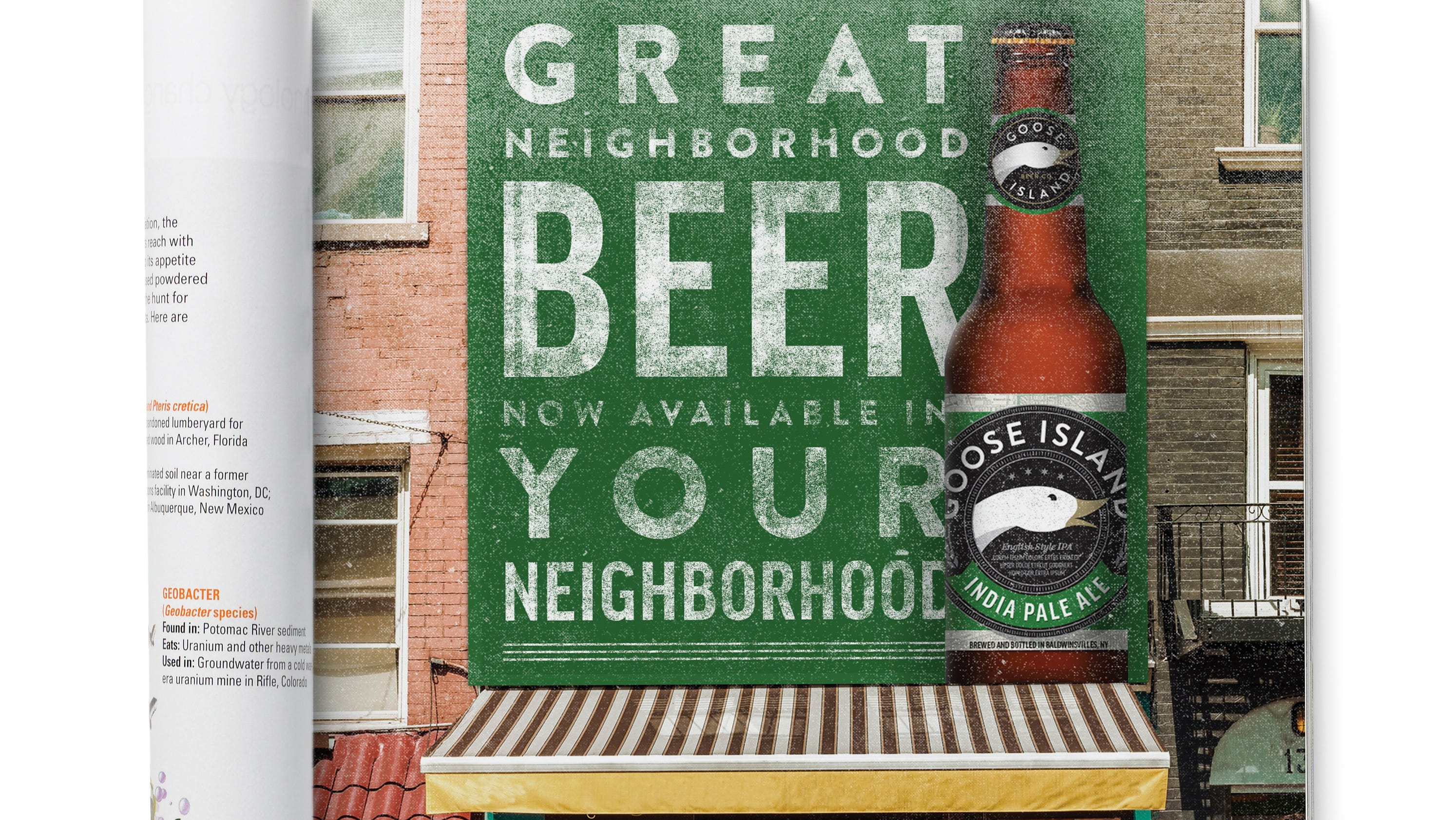 goose island drafts new promotions and new beers