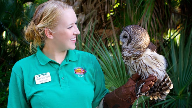 Courtney Duff is an aquarist at Brevard Zoo who works with exhibits and animals that include Errol the barred owl, who is often on display in Paws On.