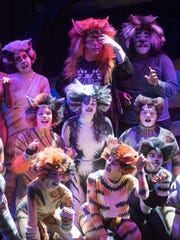"Pensacola Little Theatre's cast of Andrew Lloyd Webber's musical ""Cats.""  rehearse for the troupes' ten-performance run of the musical Tuesday evening,  July 18, 2017."