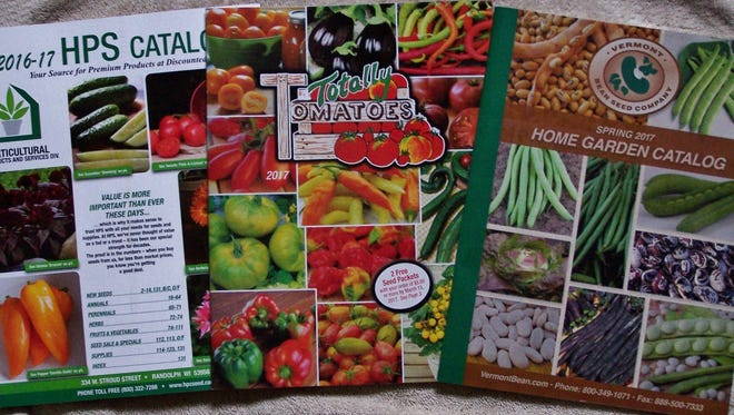 If nothing else, garden seed catalogs, all affiliates of Jung's in this group, add color to the winter season.