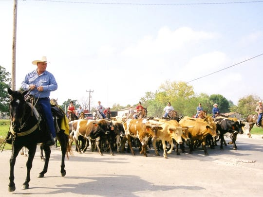 Immmokalee hosts an old-style cattle drive to kick-off a three-day celebration of the Collier County town's heritage.