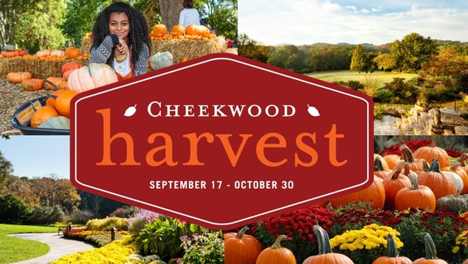Celebrate Cheekwood Harvest with a free ticket giveaway on Tennessean.com. Enter to win today!
