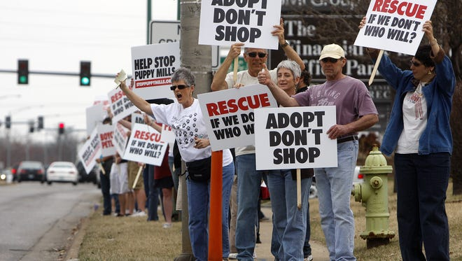 Animal welfare activists demonstrate in front of a former pet store in Springfield