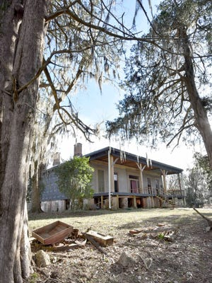 Planted by original owner Capt. Isaac Ross, cypress trees encircle the Prospect Hill Plantation home in Jefferson County.