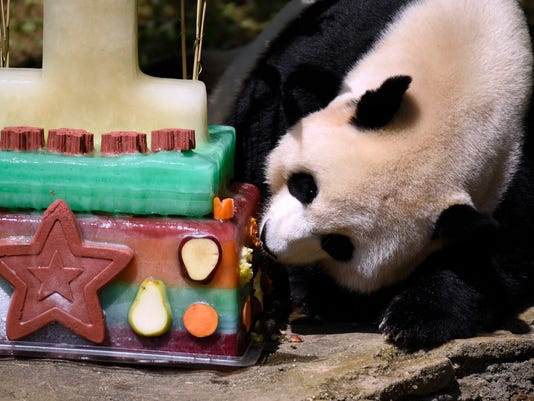 Panda+Birthday_Rob082016e.jpg