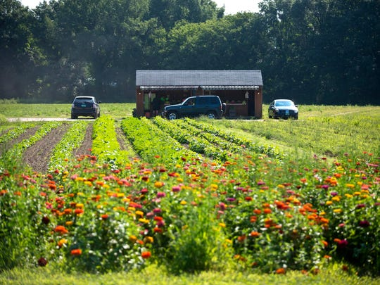 Dean Brigante's farm stand in Colchester on Monday, August 11, 2014.