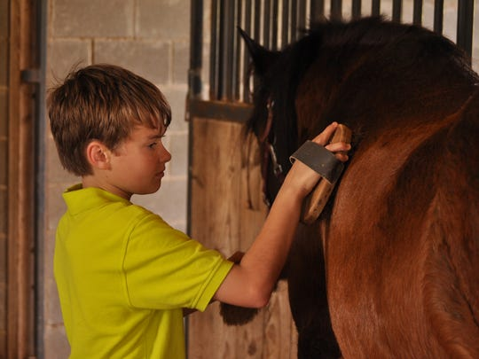 Nathaniel Swisher brushes one of the horses at Crossroads Riding Center in Pineville during a three-day clinic held on April 7-9. Children who came learned how to handle, groom and ride horses. Owners Pat and Don Barone took over the riding center, located on the Central Louisiana State hospital grounds, in January.