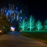 Longwood Gardens light display for 'A Longwood Christmas' on Thanksgiving night.