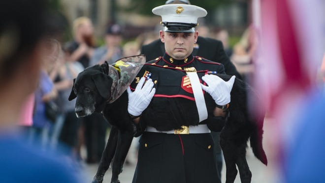 U.S. Marine veteran Lance Cpl. Jeff DeYoung carries Cena a 10-year-old black lab who was a military service dog, aboard the LST 393 where he was put down on Wednesday, July 26, 2017 in Muskegon, Mich. Cena was diagnosed with an aggressive form of bone cancer after DeYoung noticed he wasn't putting weight on his front left leg.  (Joel Bissell /Muskegon Chronicle via AP)