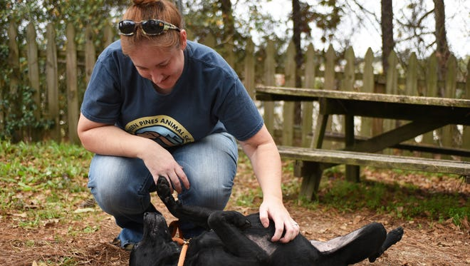 Miranda Swilley, kennel technician at Southern Pines Animal Shelter, pets one of their shelter dogs.