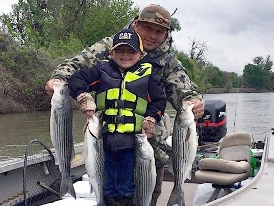 Fishing report now 39 s the time to catch spring stripers for Knights landing fishing report