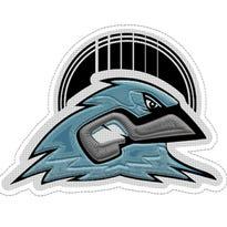 Meet the Bluebirds: Nashville's ultimate all-star baseball team