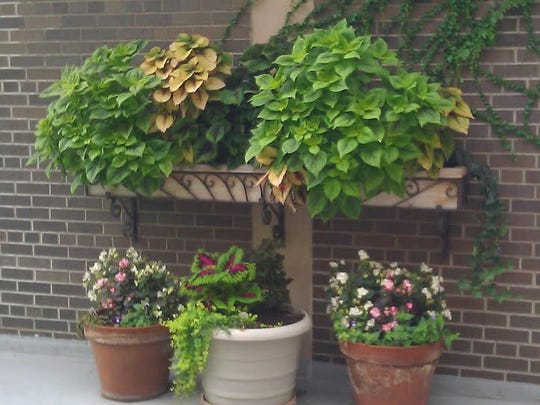 Planters mounted on a pole, wall, and tiered, offer opportunities for participant access to planting activities and success during any season while beautifying any space small, medium or large.