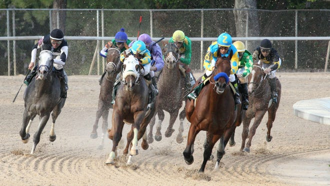 American Pharoah romped in Saturday's Arkansas Derby.
