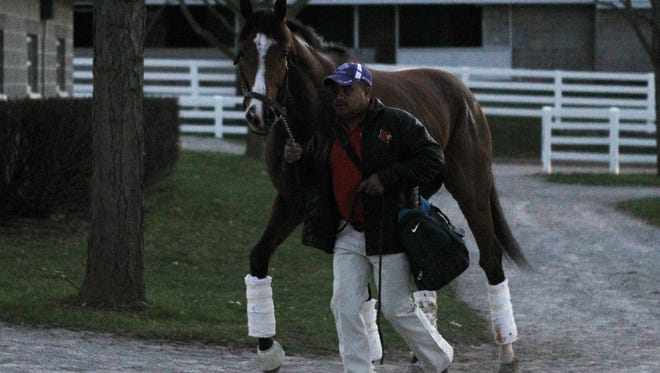 Danzig Moon's arrival at Keeneland before the Blue Grass Stakes.
