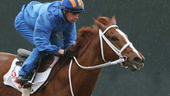 Kentucky Oaks contender I'm a Chatterbox worked Sunday morning at Keeneland.