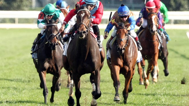 Harmonize won Wednesday's $150,000 JP Morgan Chase Jessamine by a neck over Sapphire Kitten (whom you can't see in picture) to earn a shot at the Breeders' Cup Juvenile Fillies Turf.