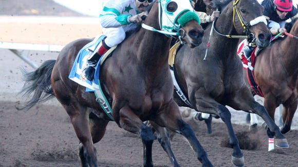Zoomin Effortlessly won a Grade 1, quarter-horse stakes