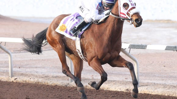 Jonesey Who wins a stakes race Sunday at Sunland Park Racetrack & Casino