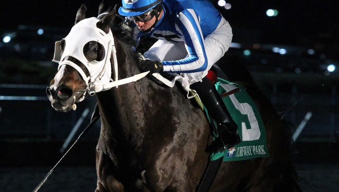 Dingdingdingding | 32nd Running - Forego Stakes | Turfway Park | 01-16-15