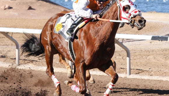 Racing has been postponed for 14 days at Sunland Park