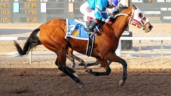 Zasha won the Peppers Pride stakes race on Saturday at Sunland Park