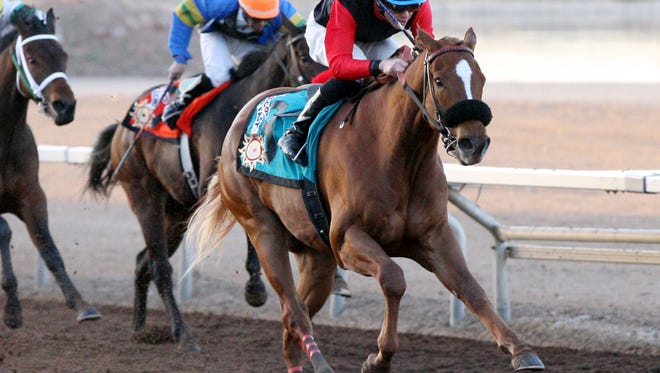 Concord Fast will compete in Sunday's 1 and 1/8th miles Sunland Park Festival of Racing Stakes at Sunland Park Racetrack & Casino. The race is worth $415,000.