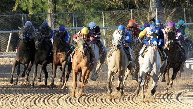 Cupid, inside, and Whitmore, outside, turn for home in Saturday's Rebel Stakes at Oaklawn Park.