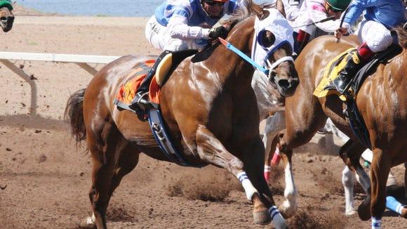 Princess Jesse wins the Sunburst Stakes at Sunland Park Racetrack & Casino on Sunday.