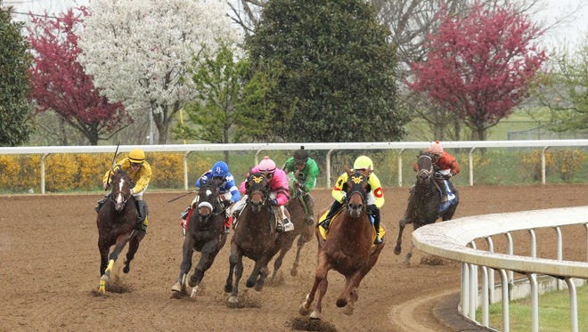 Horses race during Friday's meet-opening card at Keeneland.